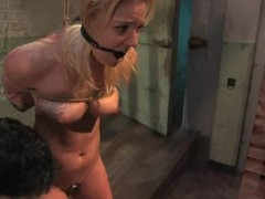 Hollie Stevens gets tortured, whipped together with fucked remarcably well