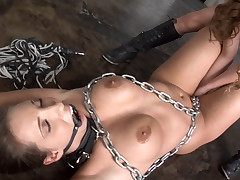 Lexi straps upstairs a huge ramrod and bonks Kelly unfathomable give the brush booty